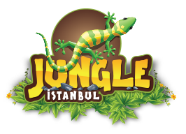 examples of logos in the jungle